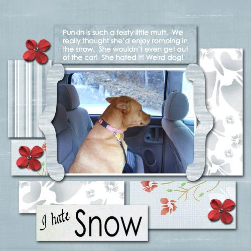 I_hate_snow_copy