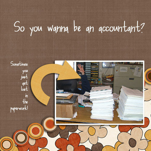 So_you_wanna_be_an_accountant_copy