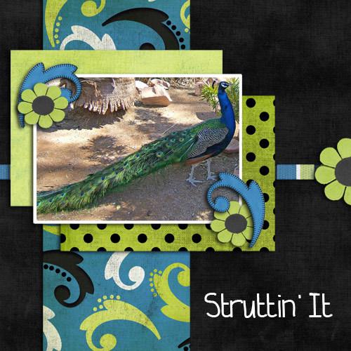 Struttinit