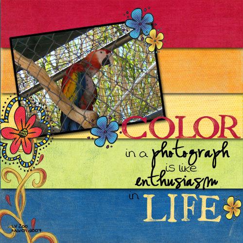 Colorinaphotograph