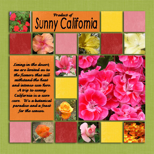 Productofsunnycalifornia