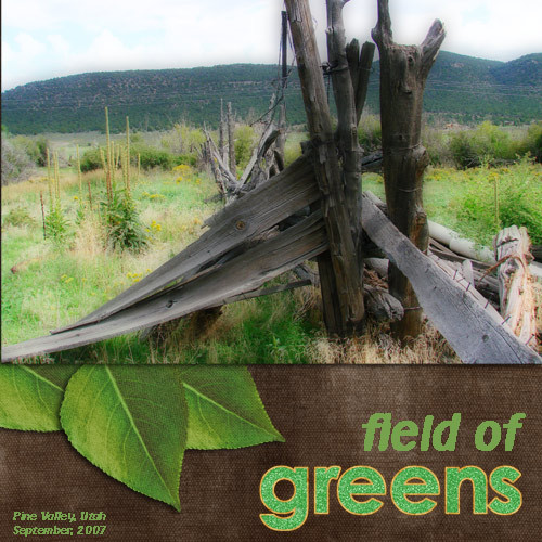Fieldofgreens