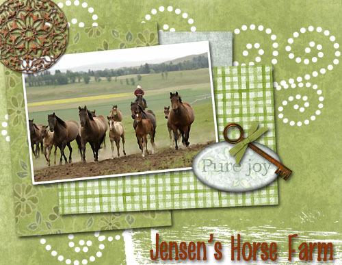 Jensens_horse_farm_copy